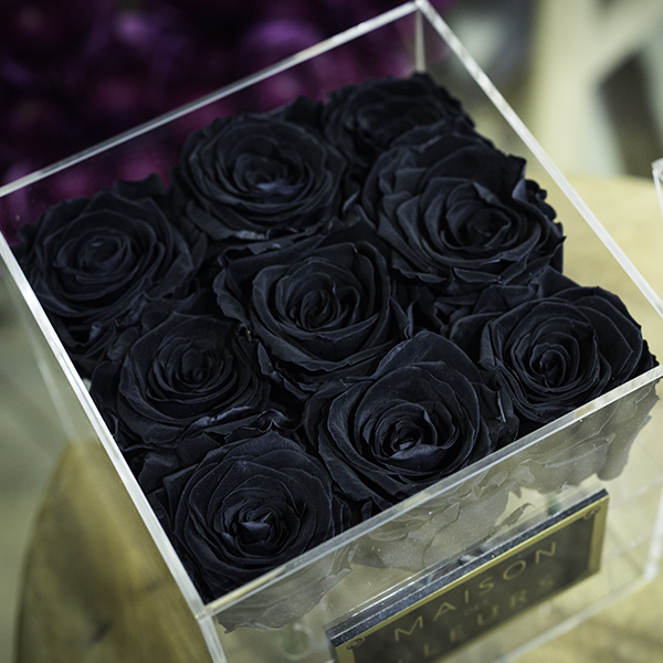 Box-plexiglas-9-roses-noires-paris-fleuriste