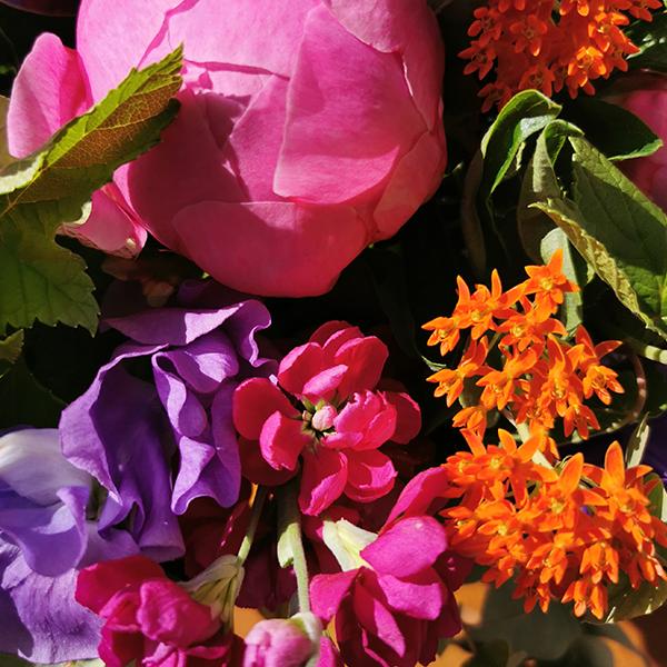 Mays-Rainbow-la-maison-des-fleurs-paris